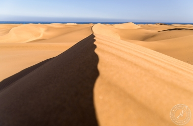 Die Dünen von Maspalomas