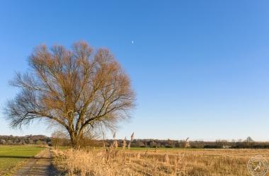 Ein sonniger Wintertag im Januar