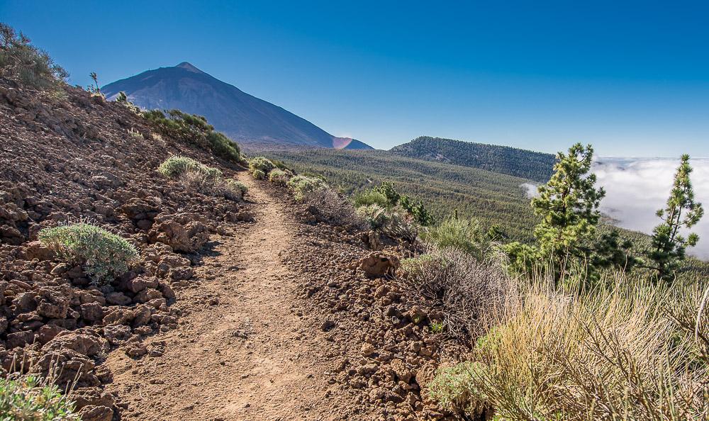 Wandern im La Orotava Tal // Hiking at the Orotava Vally